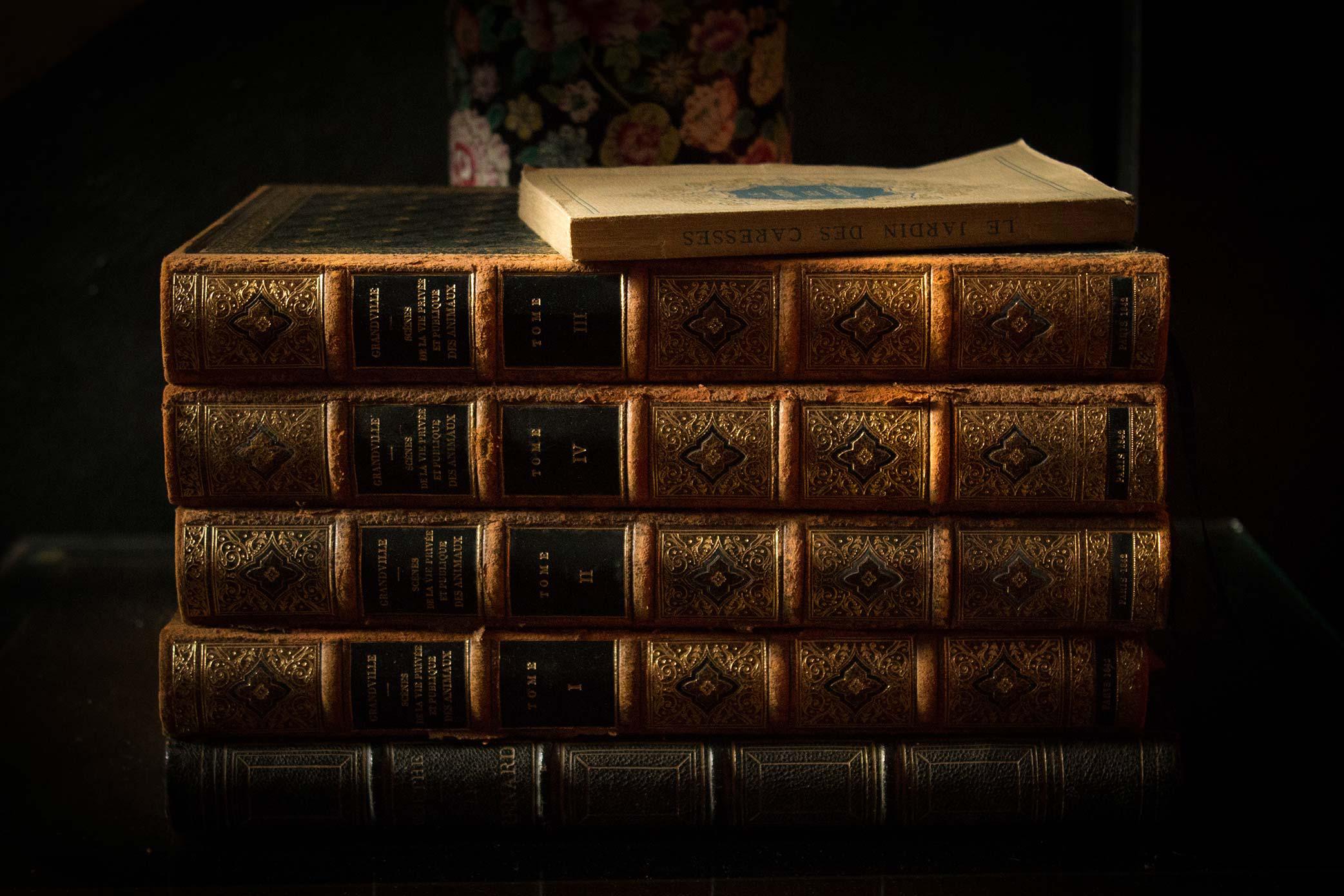 Matières - Books - Renards-Gourmets